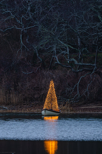 A glowing Christmas tree floats in a boat in a salt marsh on Cape Cod.
