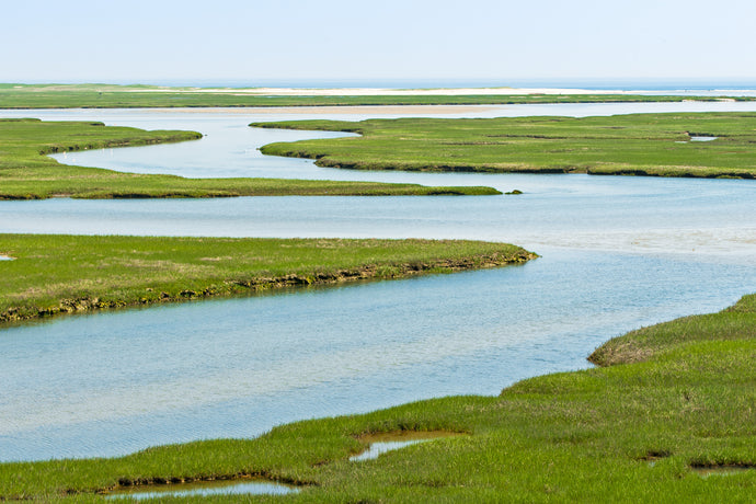Fort Hill Waterways - Cape Cod National Seashore