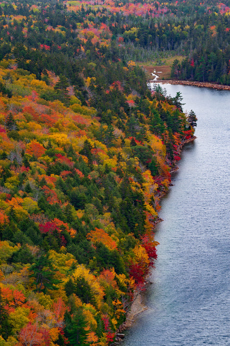 Fall Foliage at Jordan Pond - Acadia National Park