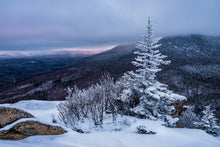 Load image into Gallery viewer, Frosty Tree on Middle Sugarloaf Mountain