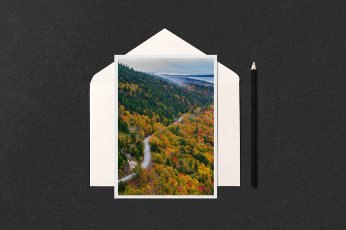 Acadia Park Loop Road Foliage Notecard