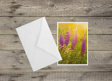 Load image into Gallery viewer, Lupines at Sunset Cape Cod National Seashore Notecard