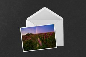 Rainbow Sunset Lupines Notecard