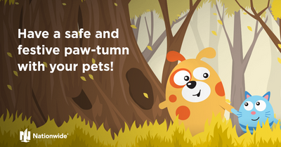 Seasonal Tips to Keep Pets Safe and Sound All Autumn Long