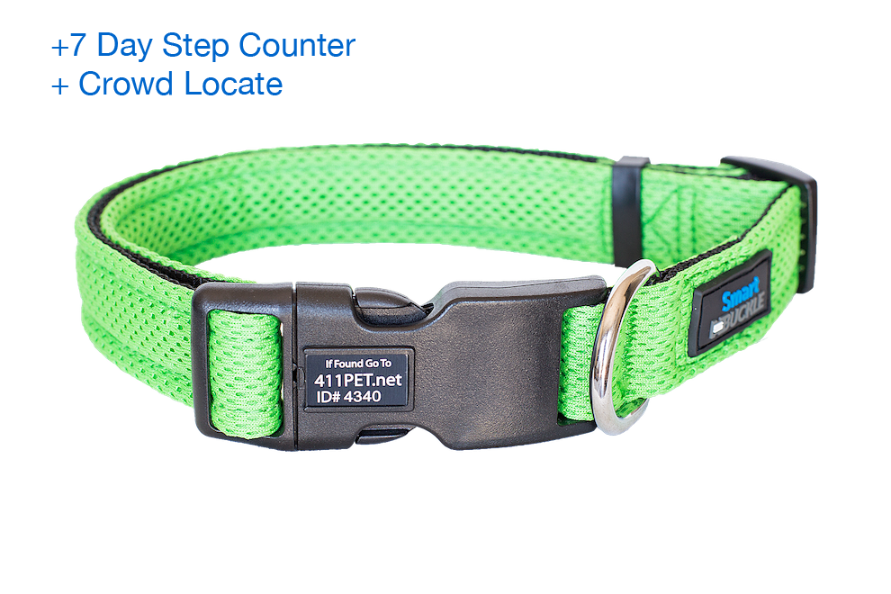 Green Air Mesh dog collar to help your dog if it becomes lost. Includes built in ID plaque and free online recovery profile to return your pet faster and safer. Step counter and free app included, no battery charging required.