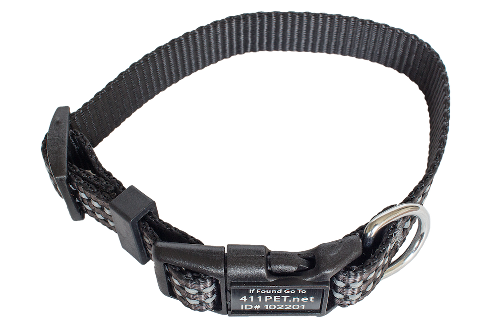 Standard Protective Pet Collar Gray X-Small