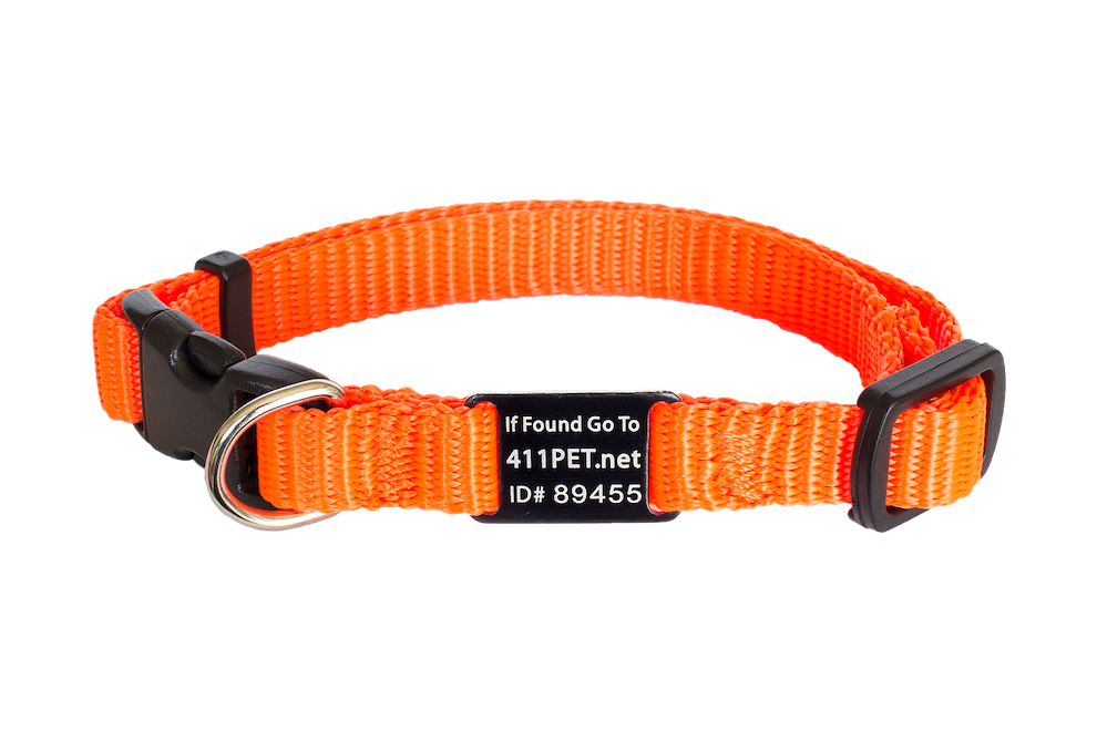 Standard Protective Pet Collar Safety Orange XX-Small
