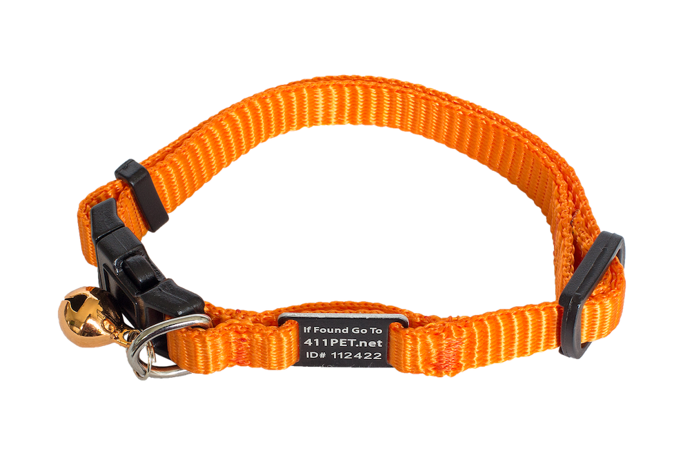 Standard Protective Pet Collar Orange Cat