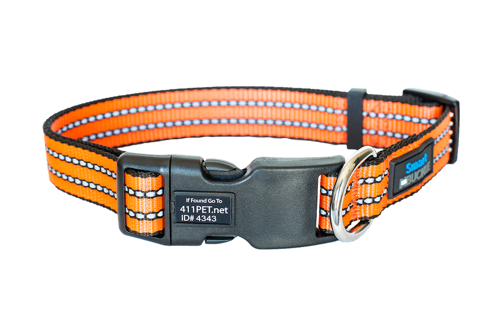 Lost Pet Recovery Collar Standard Orange