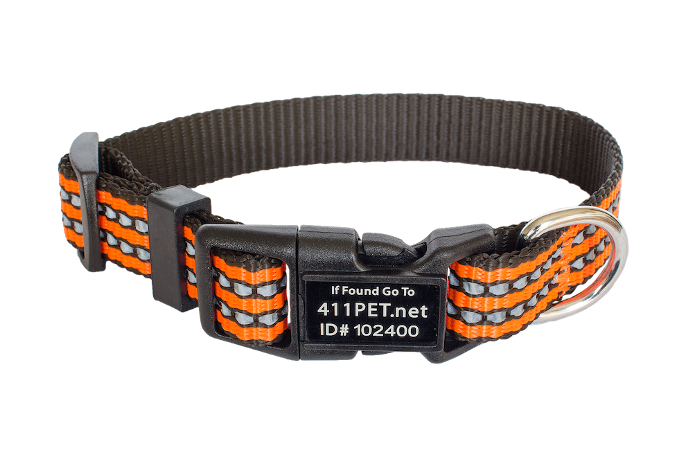 Standard Protective Pet Collar Orange X-Small