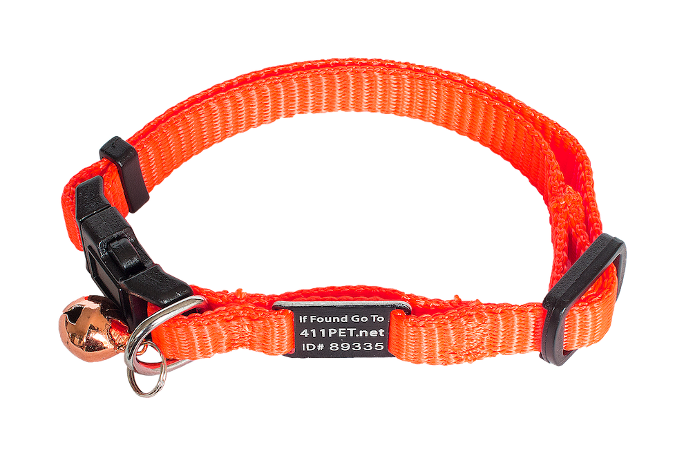 Standard Protective Pet Collar Safety Orange Cat