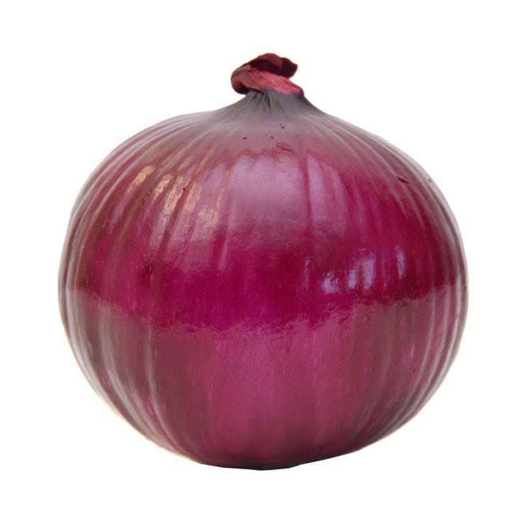 Large Red Onion