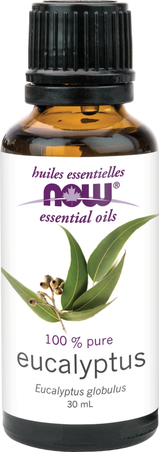 Now Eucalyptus Oil 120ml | Your Good Health