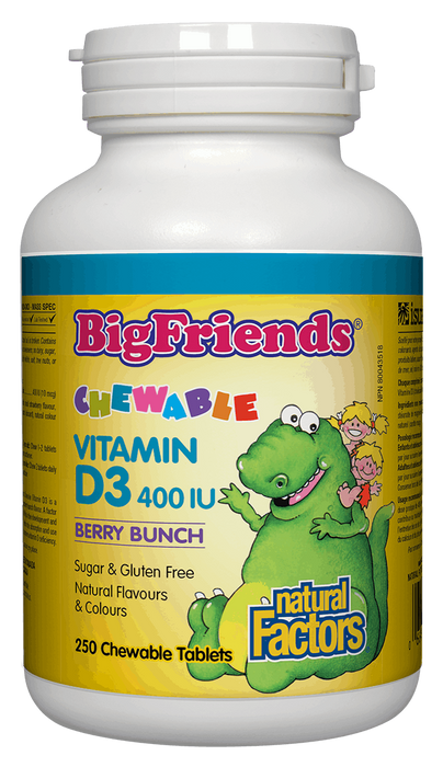 Natural Factors Big Friends Kids Chewable Vitamin D3 | YourGoodHealth