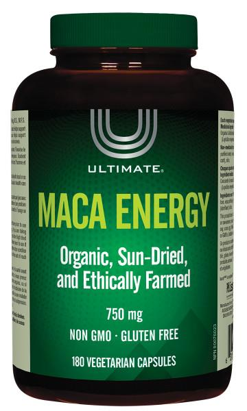 Brad Kings Maca Energy | Your Good Health