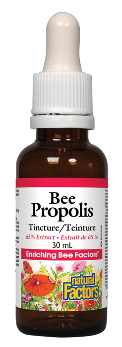 Natural Factors Bee Propolis Tincture | Your Good Health