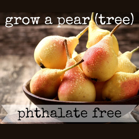 Grow-A-Pear-Tree