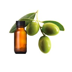 Product-EO-Olive.jpg