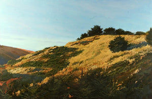 """Late Sunlight on Pacifica Hills"""