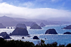 """Morning Mist, Cuffy's Cove"""