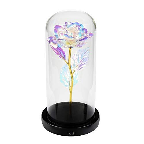 """Beauty and the Beast"" Rose Kit, Colorful Gold Foil Rose and Led Light in Glass Dome on Wooden Base for Home Decor Holiday Party Wedding Anniversary Mother's Day"