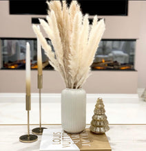 Load image into Gallery viewer, Bulrush Pampas Grass