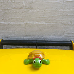 Tilda the turtle on a recycling bin
