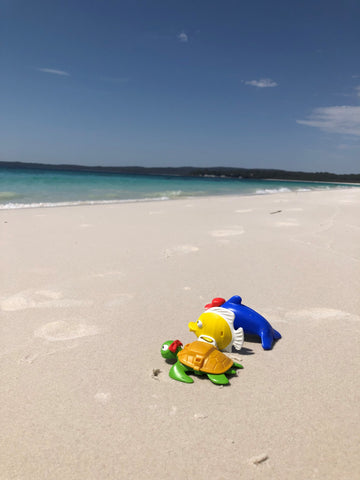 Toys on Hyams beach