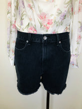 Load image into Gallery viewer, Rag & Bone Torti Shorts Sizes 26 and 28