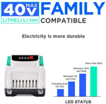 Litheli 40V 2.5AH Lithium Ion Battery Pack