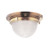 Stewart Ceiling Mount (Medium)