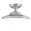 Freeburg Ceiling Mount (Small)