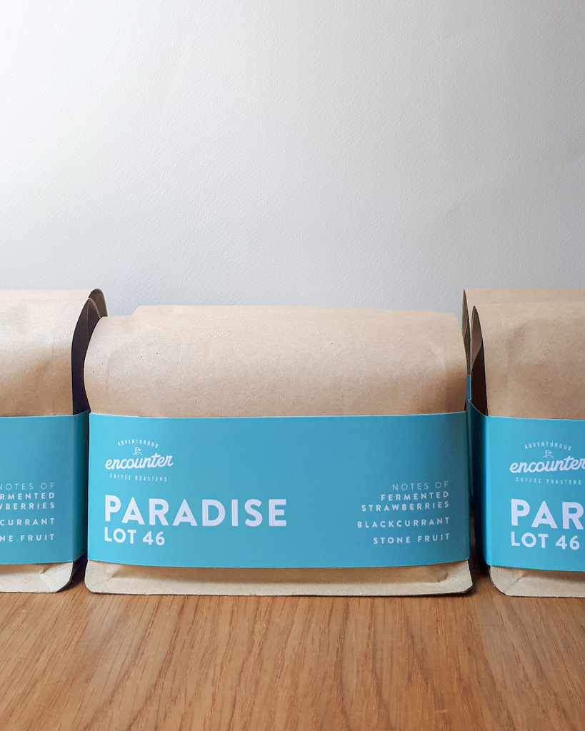 Micro Lot: Paradise - Diego Samuel, Colombia
