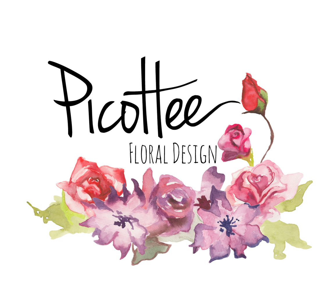 Picottee Floral