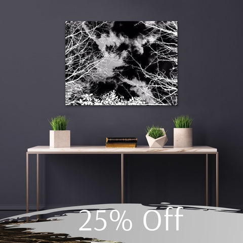 Monochrome Trees by Onlythemoon, 25% Off Black Friday, Cyber Monday
