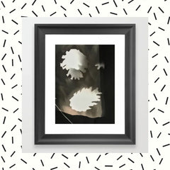 Sepia Pine Cones Photogram Framed Art Print