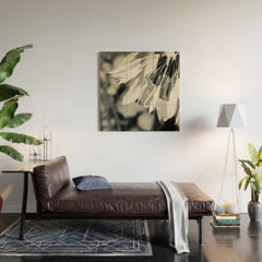 Black and White Dandelion 1 Wood Wall Art