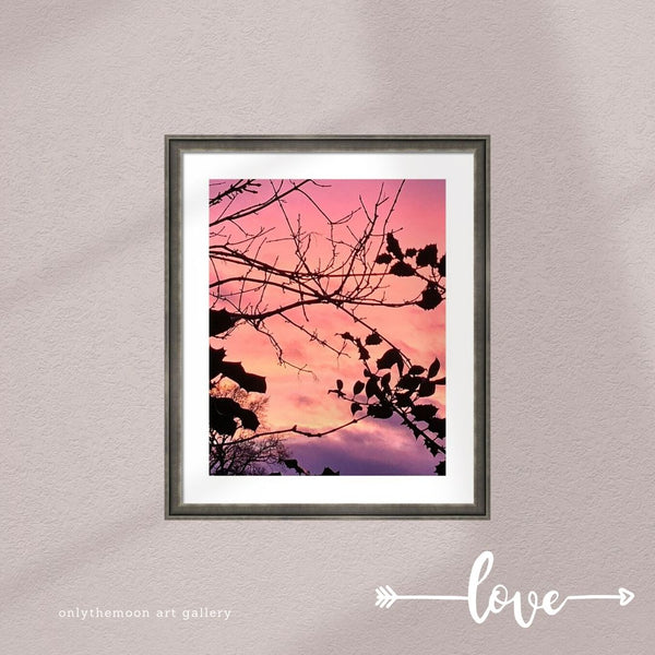Holly Tree Sunset 1 Framed Art Print by Onlythemoon