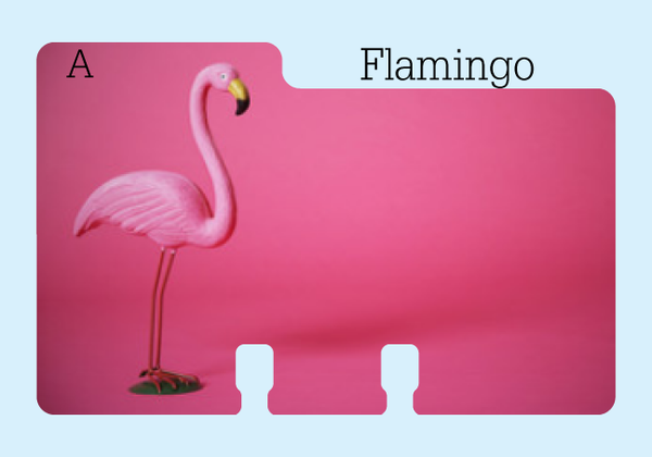 "A Rolodex Divider refill in a bright pink with a flamingo on one side. It is on a pale blue background with the word ""Flamingo."""