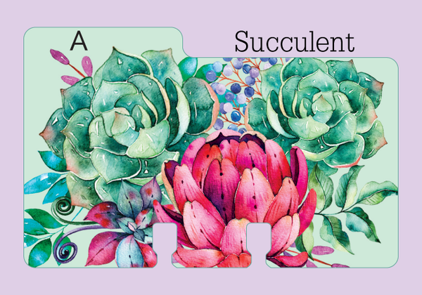 "A heavy duty Rolodex Divider in a pretty succulent print. The mint green background is covered in watercolor floral succulents in pink and green with a touch of blue and purple. The divider is on a pale purple background with the word ""Succulent."""