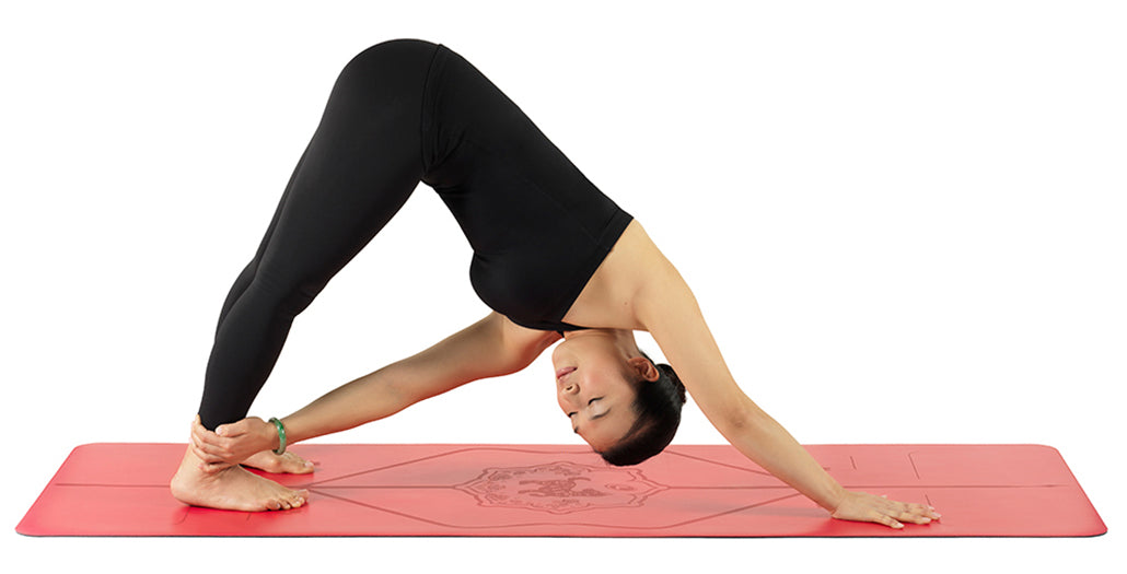 Downward Facing Dog Twist