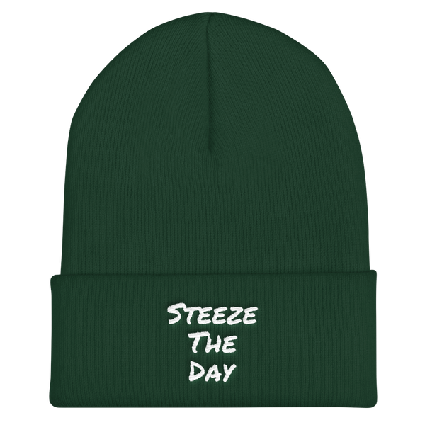 Steeze The Day - Cuffed Beanie