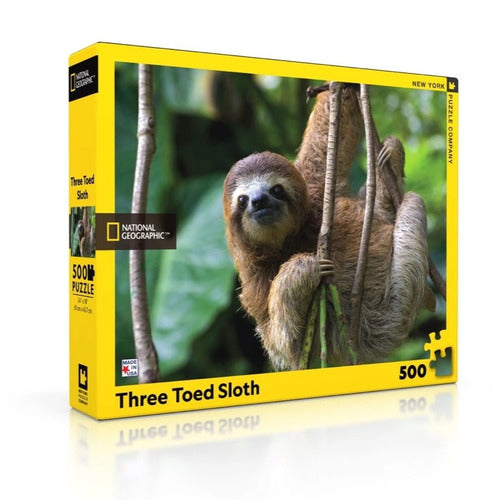 500 Three Toed Sloth