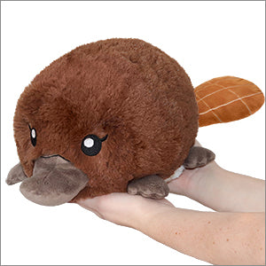 Squishable: Baby Platypus 7""
