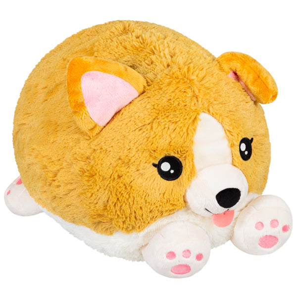 Squishable: Baby Corgi 15""