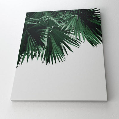 paint-by-numbers-palm-leaf