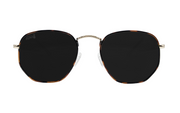 Tortoise Shell - Jet Black Polarized - Bermuda