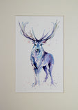 STAG watercolour #2