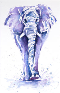 ELEPHANT #8 Watercolour painting