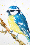 BLUE TIT #2 watercolour painting